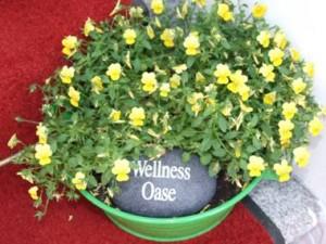 Wellness-Oase | Kosmetik Anabelle Scheer